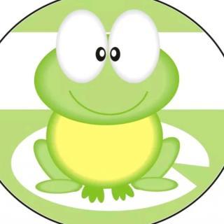 睡前故事《青蛙🐸看医生》