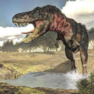 【写故事听】恐龙行动队之特暴龙蹄蹄