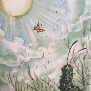 《毛毛虫的天空》绘本故事