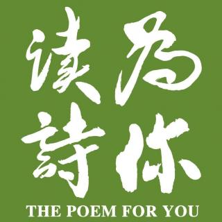 《给青年诗人的信》(节选)「为你读诗」:毛不易(唱作人)