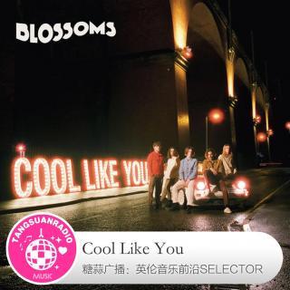 糖蒜爱音乐之The Selector:Cool Like You