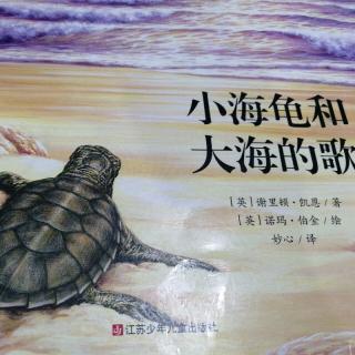 绘本故事《小海龟和大海的歌》