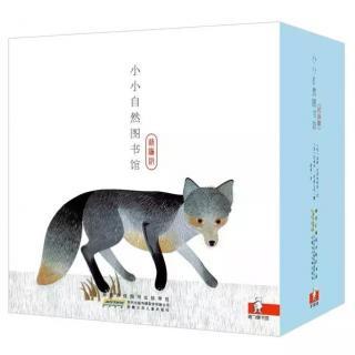 【艾玛读绘本】银狐