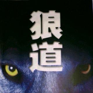 《狼道》狼的天条是做、做、做