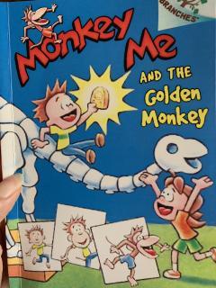 11-6-golden monkey1-damon8