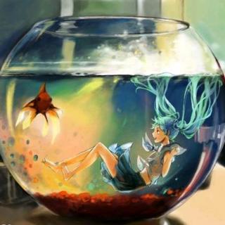 《The Fish Tank》