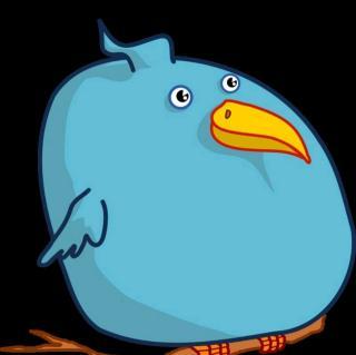 多胖的鸟啊!