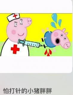害怕打针的小胖猪