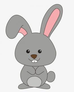 小兔子的红眼病