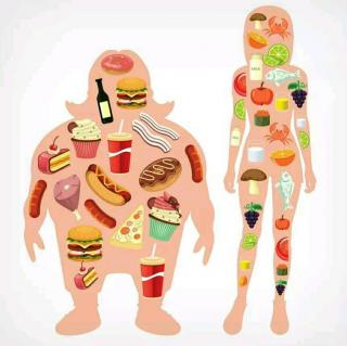 前言-《自己才是体重与健康的主宰者》