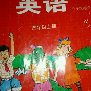 英语阅读。