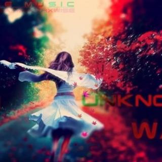 【polestar】一首旋律优美无比奔放的纯音乐 -  In Unknown Way