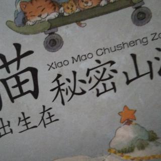 《笑猫日记》小猫出生在秘密山洞