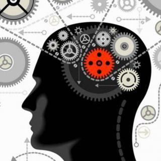 你的大脑真的只被开发了10%吗?
