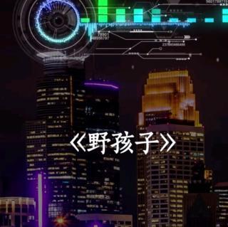 野孩子—杨千嬅(原唱)