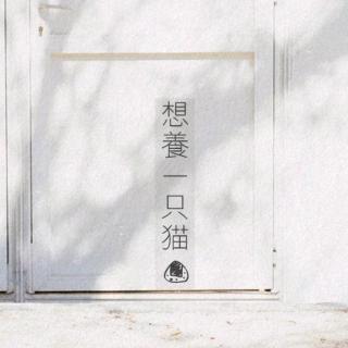 丁程鑫&马嘉祺-黑暗骑士