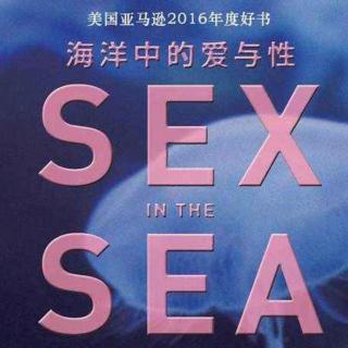 听书《海洋中的爱与性》