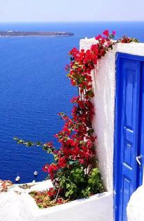 【诗歌记忆】面朝大海,春暖花开—海子