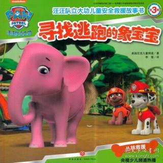 第1027期-汪汪队立大功之寻找逃跑的象宝宝