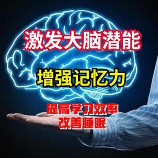 16.α脑波音乐+提高记忆力专注力、改善睡眠