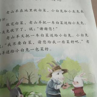 咏鹅和小白兔和小灰兔
