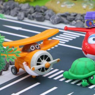 乐迪和佩齐一家去野餐,遇到了一只小乌龟