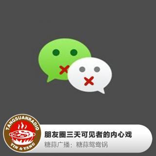 糖蒜鸳鸯锅:朋友圈三天可见者的内心戏