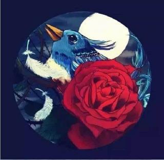 王尔德经典童话-夜莺与蔷薇