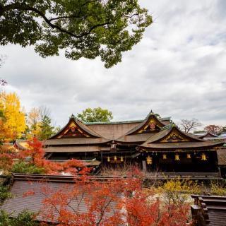 京都 | 秋日限定美景