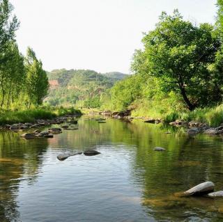 白噪音|绿水青山  小桥流水