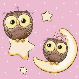 用心说 | 月亮下的猫头鹰