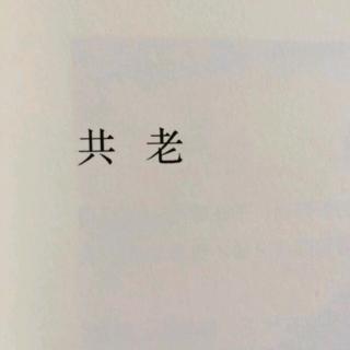 🐬失落沙洲——徐佳莹