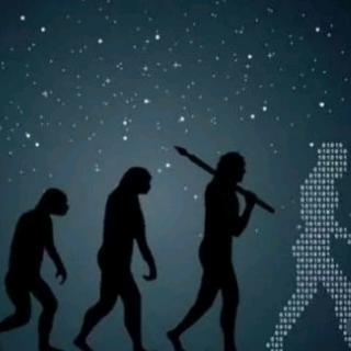 神秘的物种进化之谜
