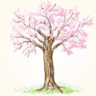 🦋一棵开花的树——席慕容