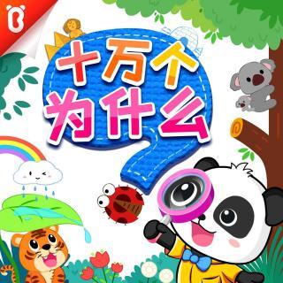 《彩虹是怎么来的》十万个为什么【宝宝巴士故事】
