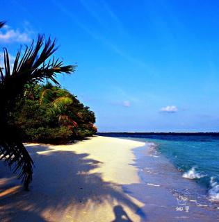 娜里冥想:能量的小岛