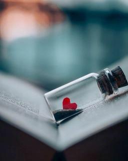 不爱你的人,永远有借口