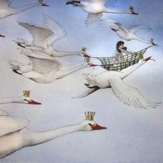 安徒生童话-野天鹅第二集