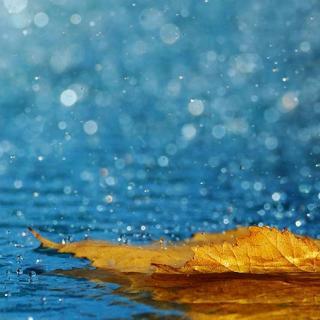 深度放松滋养/冥想轻音乐(水系)