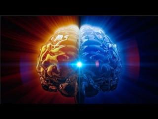 创造生命奇迹4⃣️人是精神存在的振动延展
