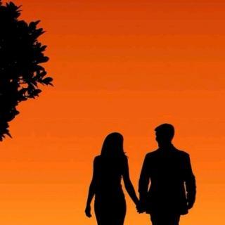 婚姻心理学:夫妻为什么会吵架?
