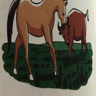 马和牛的分工