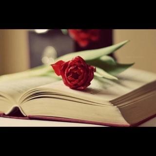 546、人际关系:聪明人是如何维系人际关系的