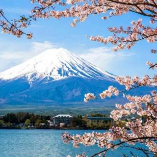 纯雨声(日本富士山)