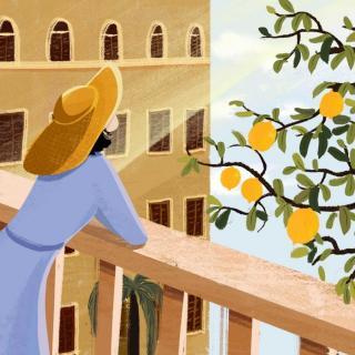 来学一首大家耳熟能详的的英文歌-Lemon Tree