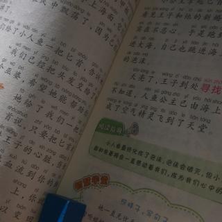 课外阅读——海的女儿