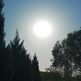 【音乐】蒋大为——草原上升起不落的太阳