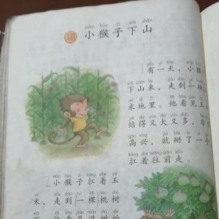 曙光小学一年级2班李钦宸百日阅读《小猴子下山》