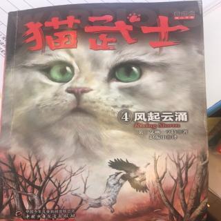 猫武士第一章