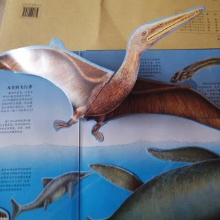 在天空和海洋的恐龙